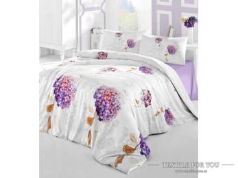 Постельное белье RANFORCE HIDRA (Евро) - (50x70 см  - 2 шт.) - Фиолетовый